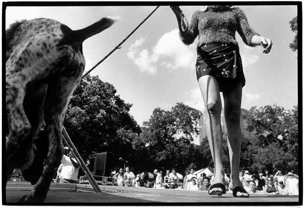 Photo and Copyright Roger Cremers 10.09.2000 Dallas, Texas. Pet's .com Dog day in Reverchon Park . Desing industries foundation fighting Aids organiseert 5 maal per jaar een modeshow waarbij bekende New Yorkse kledingontwerpers haute couture gemaakt hebben t.b.v. Aids.