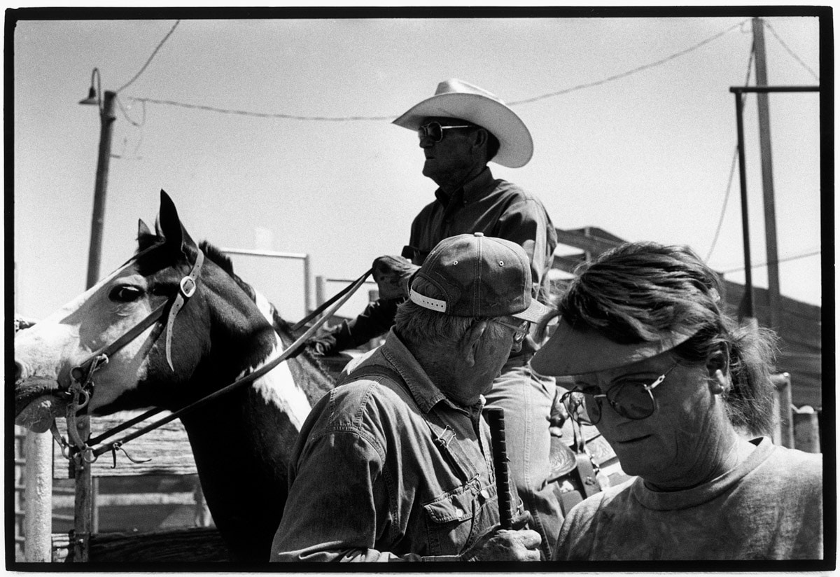Photo and Copyright Roger Cremers 05.09.2000 Amarillo, Texas. Amarillo Livestock Auction. Windell Trammel (te paard) is 'Yard Foreman'. Hier in beeld met 2 medewerkers. De vrouw rechts is Ms Jean Crook